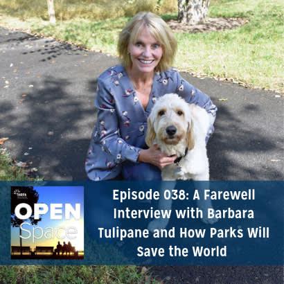 Barbara Tulipane 410