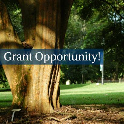 DFC Grants
