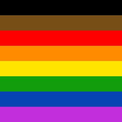 Pride Flag 410