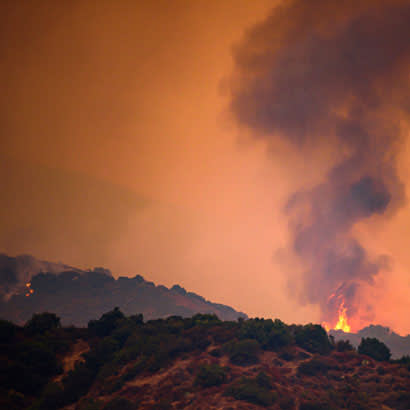 Wildfires Blog 410