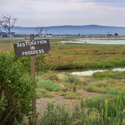 conservation award blog