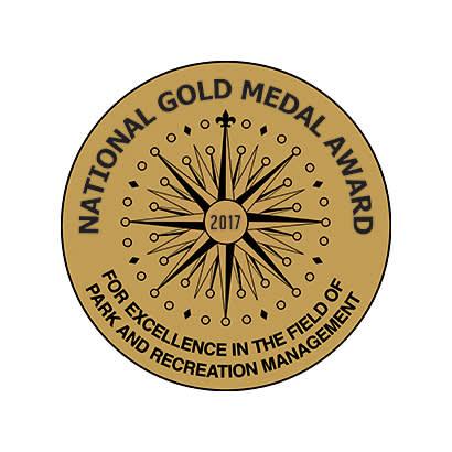 gold medal award logo