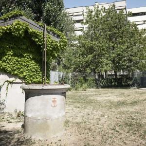 Fondazione-Augusta-Pini/gallerie/FILE-18