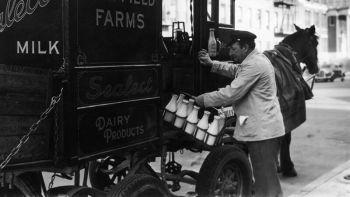 """La modalità """"Milk Run"""" nella logistica aziendale"""