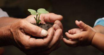 Passaggio generazionale in azienda: un caso reale