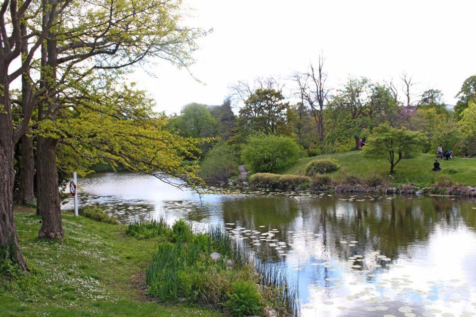 week-end Copenhague jardin botanique
