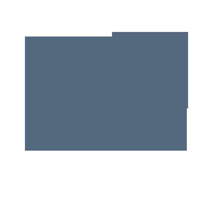 Logo noix de coco