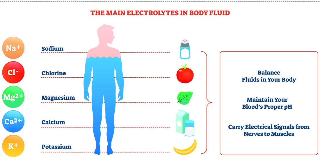 Illustration of electrolytes in the body