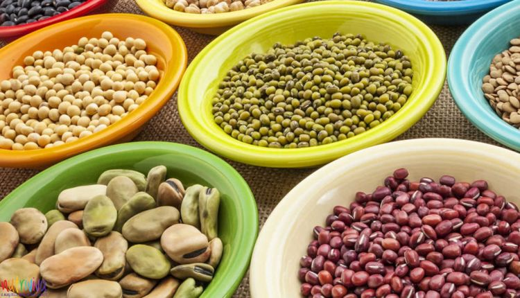 Molecole antinutrizionali molecole antinutrizionali Molecole antinutrizionali, come assumerle in modo sano acido fitico optimized 750x430