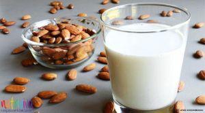 Latte di mandorla latte di mandorla Latte di mandorla fatto in casa latte mandorla 300x166