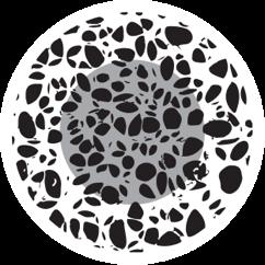 osteoporosis-page-osteomyelitis