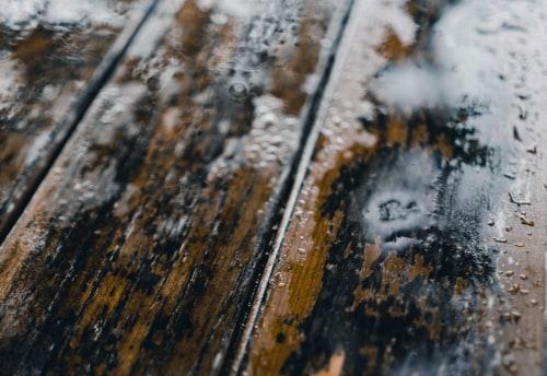 Как избавиться от плесени в деревянном доме?