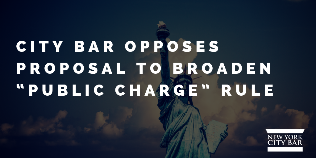 DHS Comment: Inadmissibility on Public Charge Grounds