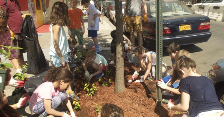 A group of children work together adding mulch to a tree bed