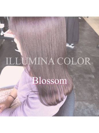 ILLUMINA color:Blossom