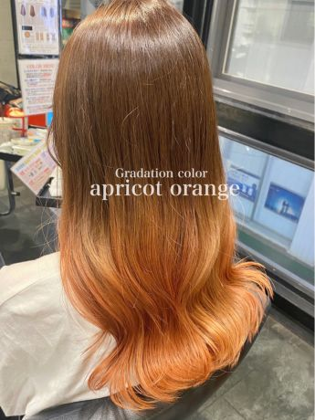 "Gradation color ""apricot orange"""