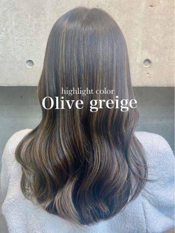 """highlight color """"Olive greige"""""""
