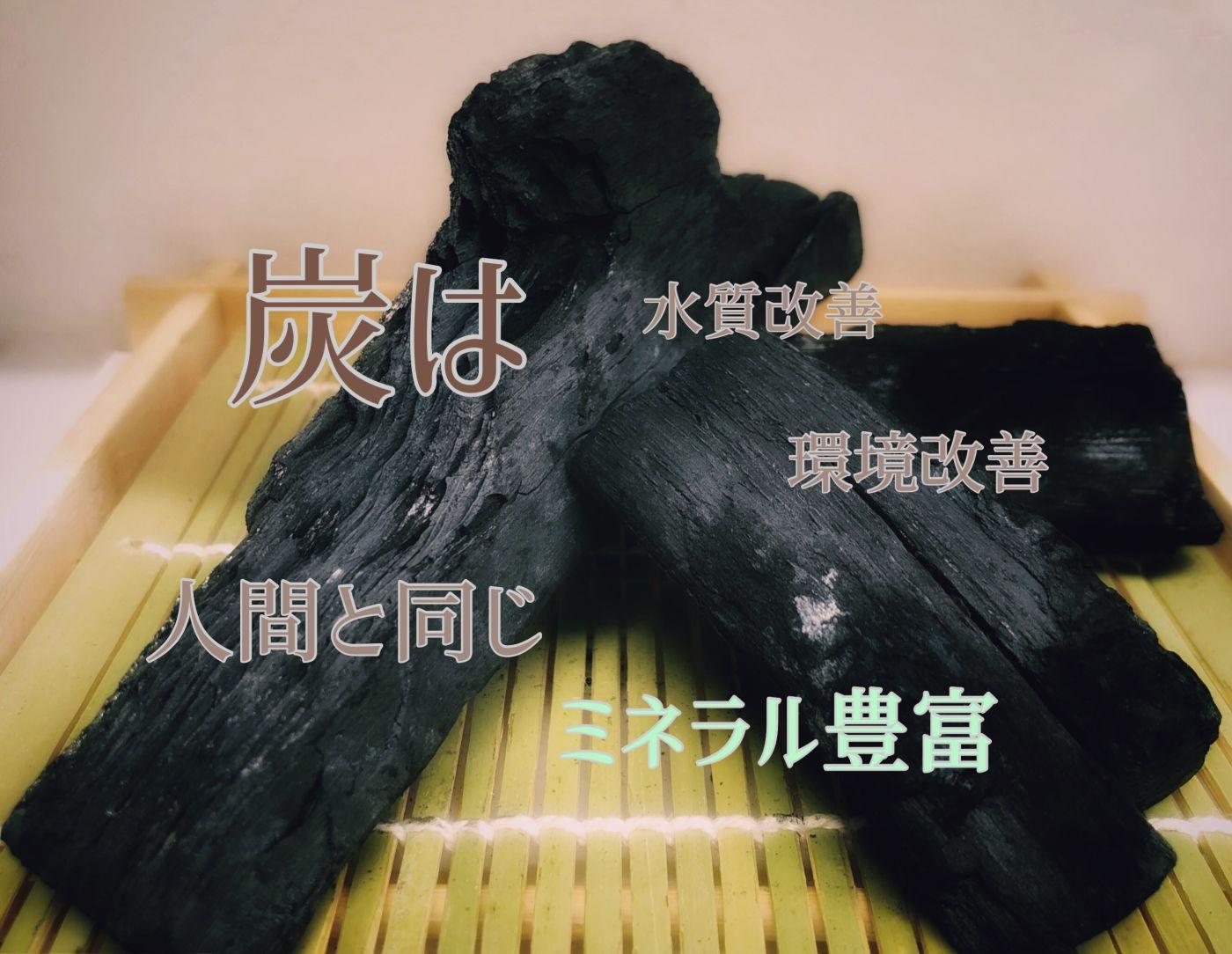 炭は人間と同じミネラル