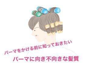 パーマをかける前に知っておきたいパーマに向き不向きな髪質