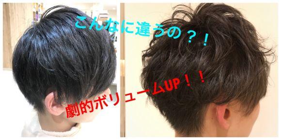 あなたの悩みはこれで解決!!知ってる人だけが得する髪の毛のボリュームUP術!!