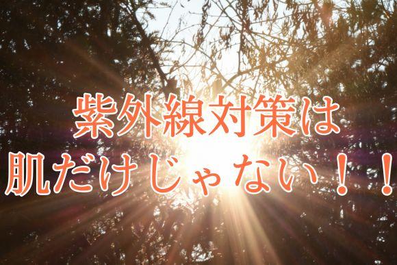 紫外線対策は、肌だけじゃ無い!!!!