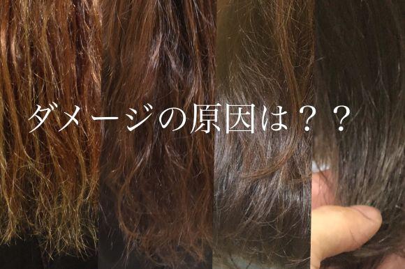 髪の毛のダメージの原因は何?バサバサになる?