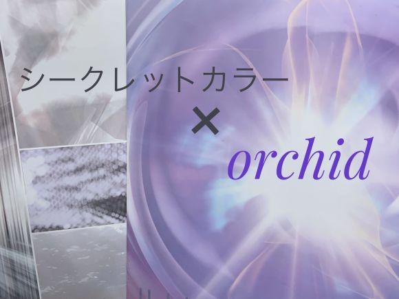 シークレットカラーと相性抜群!orchid(オーキッド)カラー