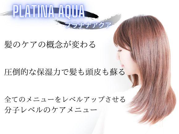 髪に悩む全ての人にオススメ【プラチナアクア】。ケアの概念が変わる新しいケアメニュー