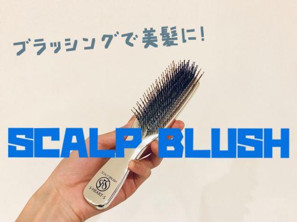 【ブラッシングするだけで美髪に!?】世界17ヶ国以上で大絶賛 SCALP BRUSH(スカルプブラシ)