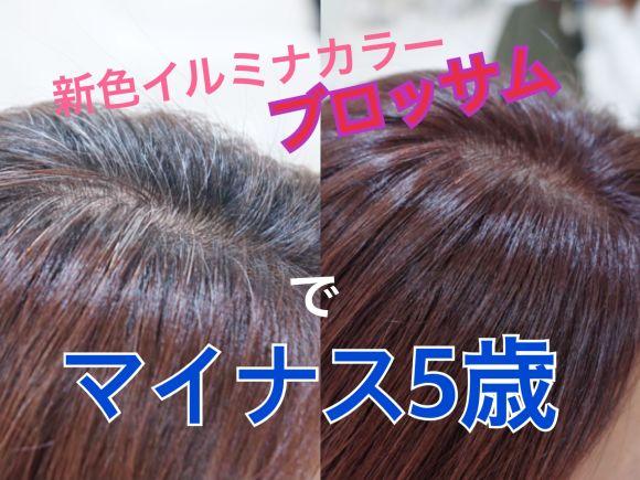 白髪染めは暗くなるはもう古い?!新色イルミナカラーで明るく透明感のある白髪染めができます!!