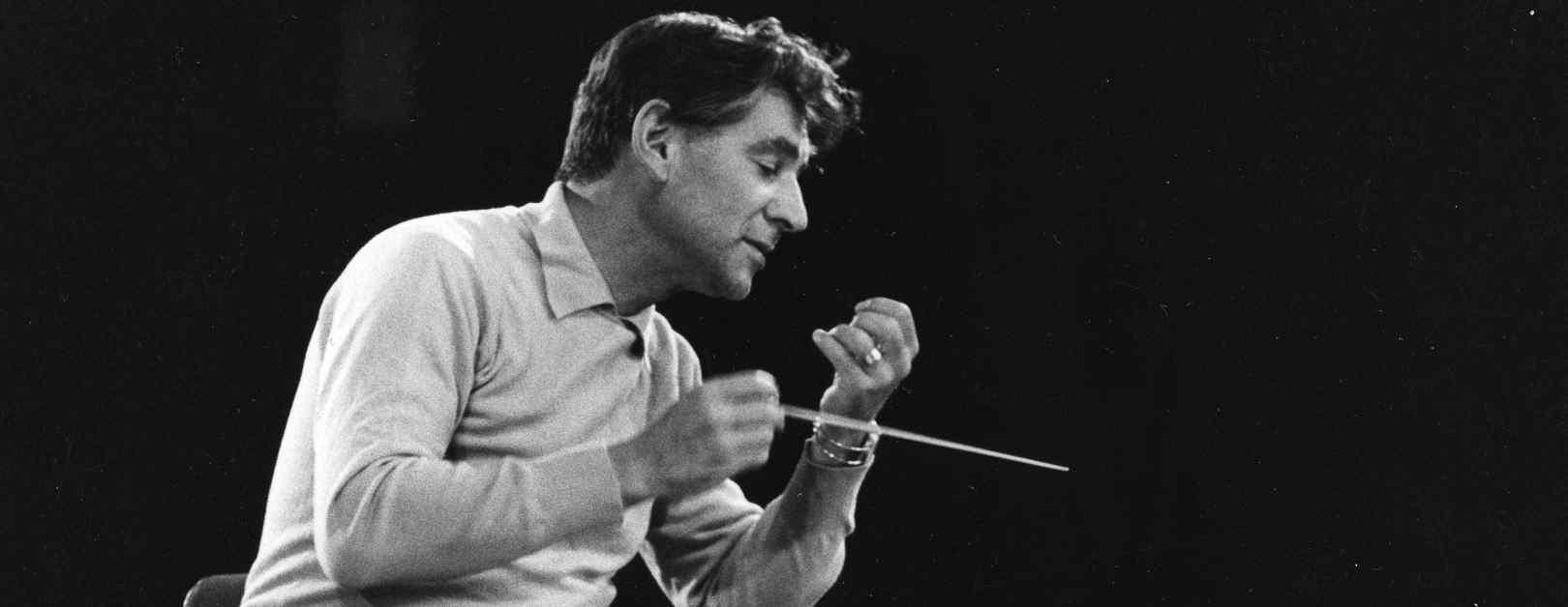 The Leonard Bernstein Fund