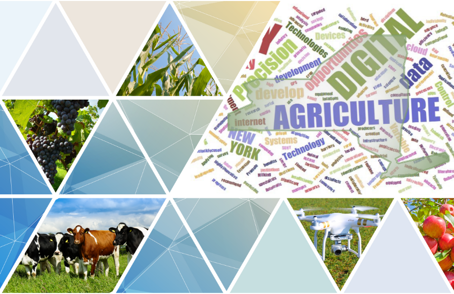 Digital Agriculture Continues to Evolve in New York State | NYS GIS