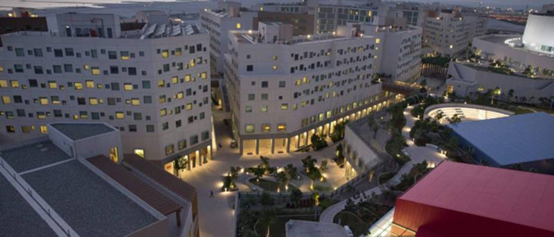 NYU Abu Dhabi Institute