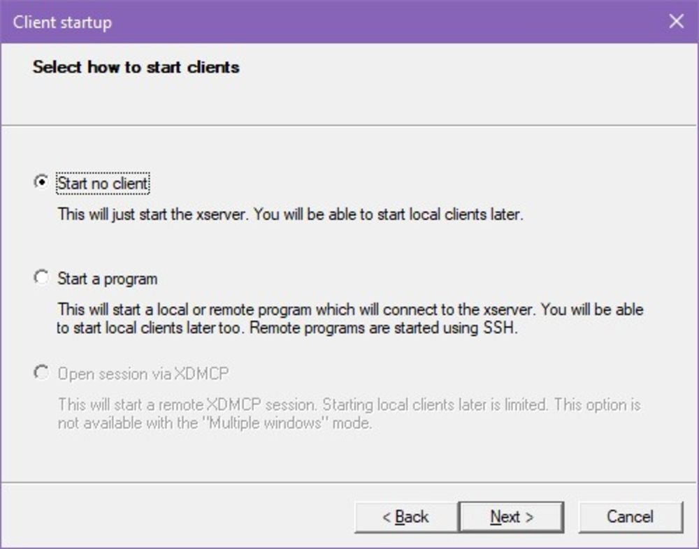 "A screenshot displaying the ""how to start clients"" option"