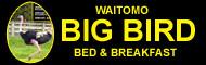 Waitomo Big Bird B&B & Petting Farm
