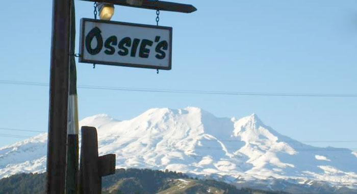 Ossies Motels & Chalets