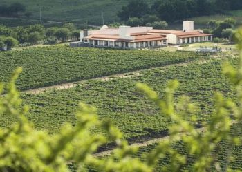 Viñas de Cafayate-Wine Resort