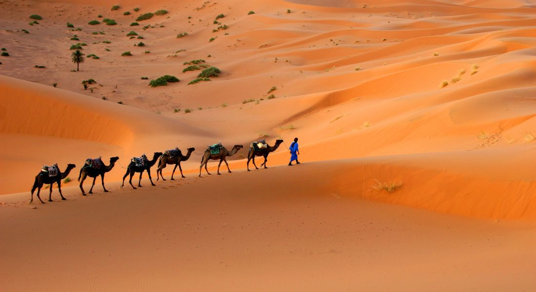 Morocco Tours With Expert Local Guides Global Basecamps - Morocco tours
