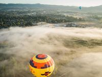 Willamette Valley Hot Air Balloon Ride and Champagne Brunch