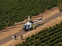 Willamette Valley Helicopter Wine Tour & Lunch