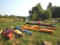 Paddle and Pinot Kayak Tour