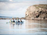 Orca Search Kayak Tour
