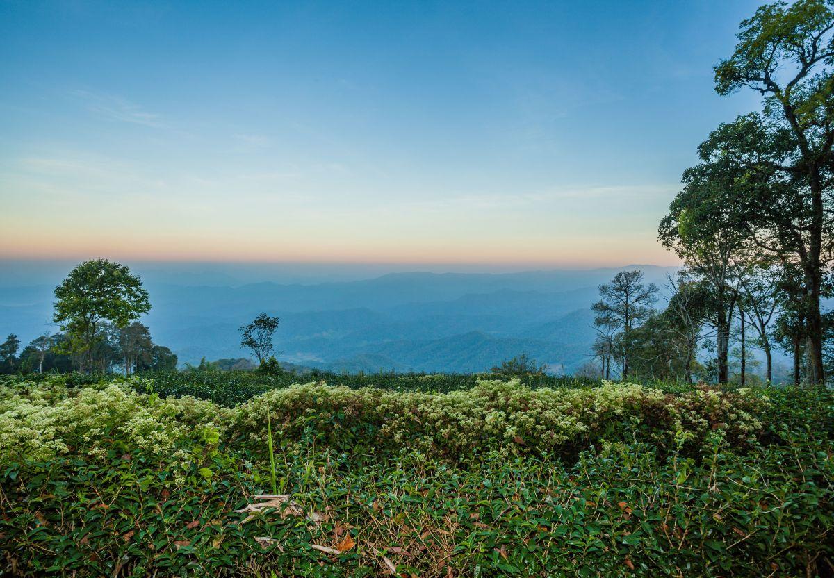 chiang mai park landscape sri lanna national park