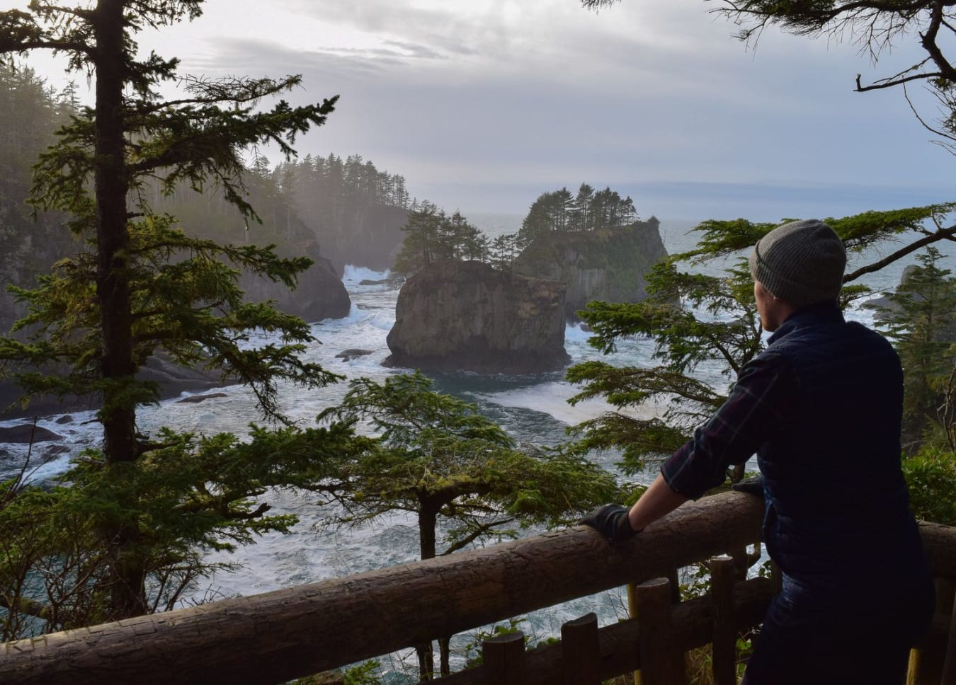 Puget Sound and Olympic Peninsula VIP Adventure 6-day