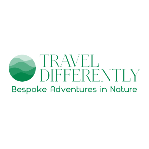 Travel Differently