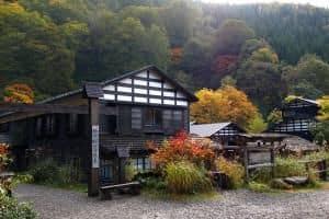Custom Japan Trip