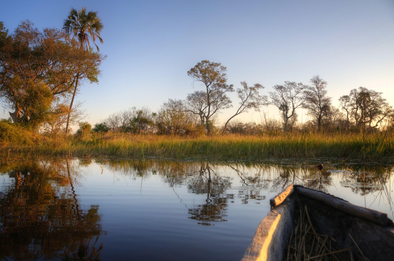 Botswana okovango landscape