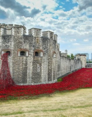 Paint poppies! Help for Heroes Special - London Bridge by PopUp Painting - art in London
