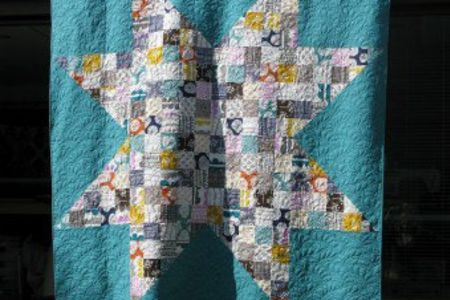 Learn all the basic techniques to free motion quilting in this introductory class