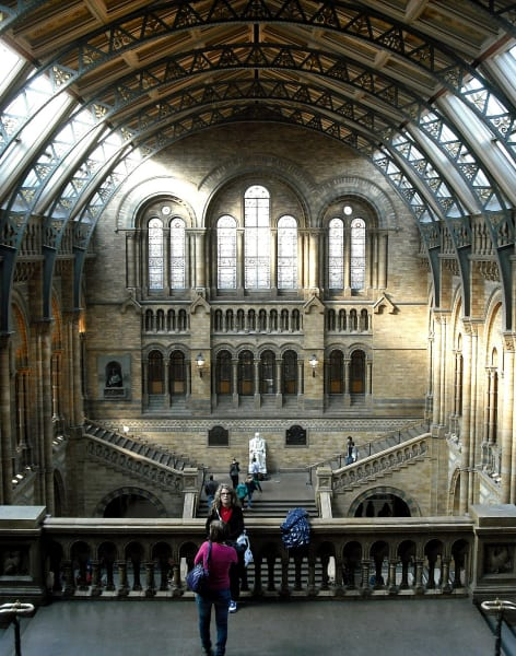 Write Poems of Natural History Workshop by The Poetry School - art in London